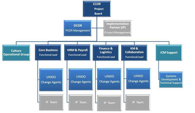 project charter sap implementation pdf