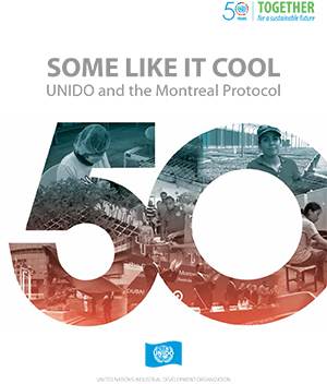 montreal protocol essay Ozone layer essay atmospheric ozone (o3) is found mostly between about 9 and 23 miles above the earth's surface in a region called the stratosphere  the montreal protocol not only was the first international treaty on a global ecological problem but is widely regarded as a landmark regime and prototype for future negotiations its.