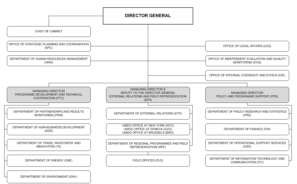 Microsoft Word Org Chart Template Forteforic