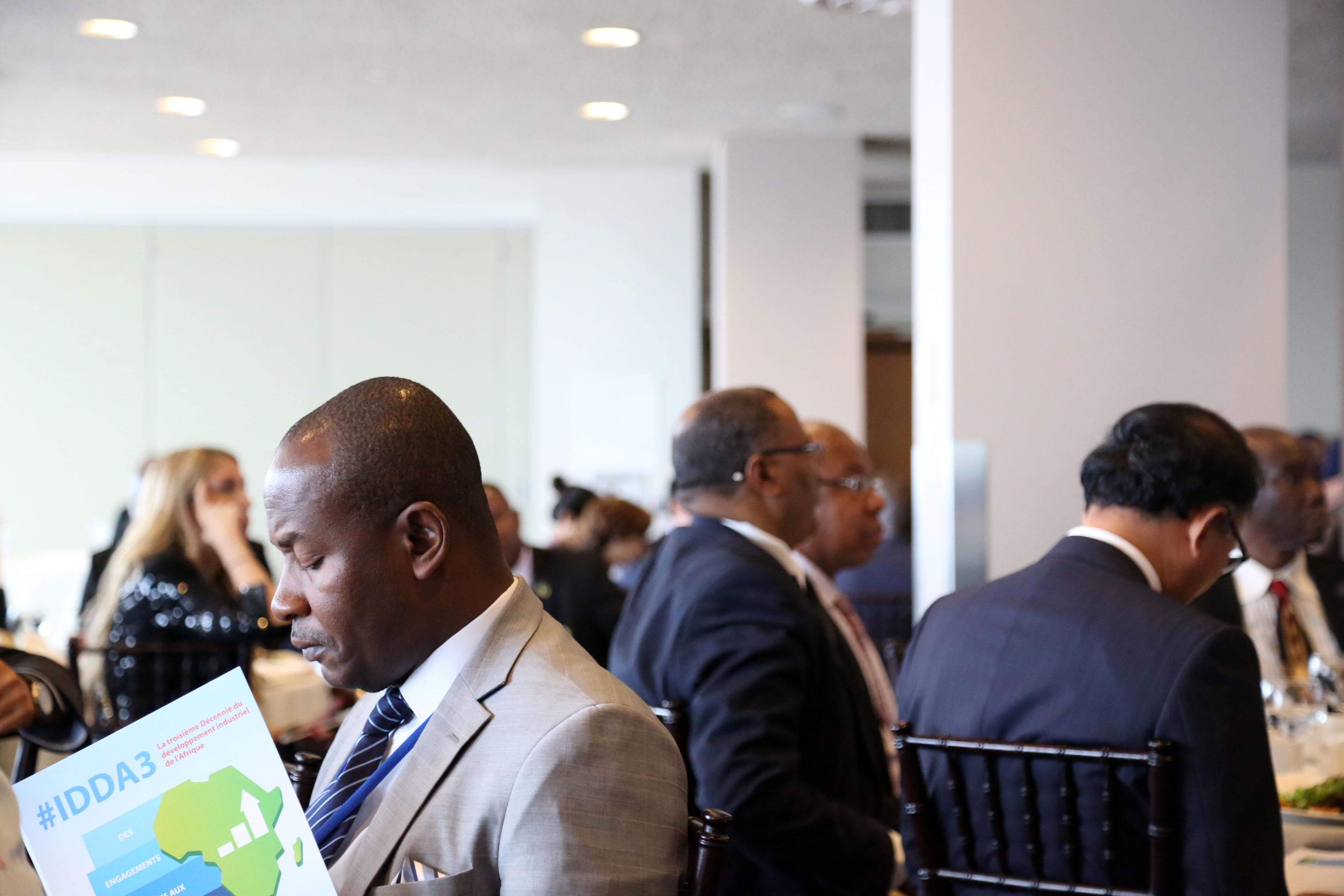 The Third Industrial Development Decade for Africa: From political commitment to actions on the ground/gallery