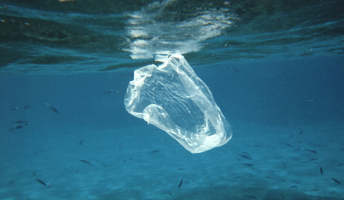 UNIDO advises G20 on how to address the challenge of marine plastic litter using circular economy methods