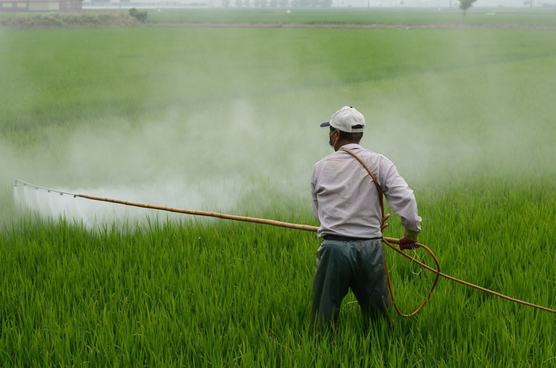UNIDO wins award for projects phasing-out hazardous pesticide
