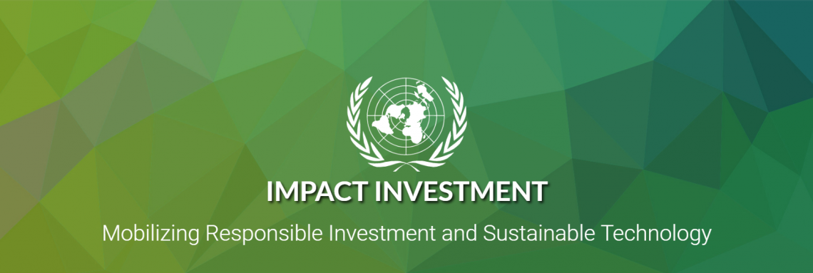 UNIDO and WAIPA launch e-learning module on impact investing