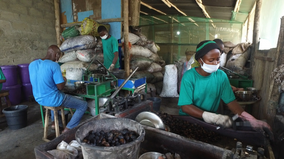 Project boosts competitiveness of Benin's small enterprises