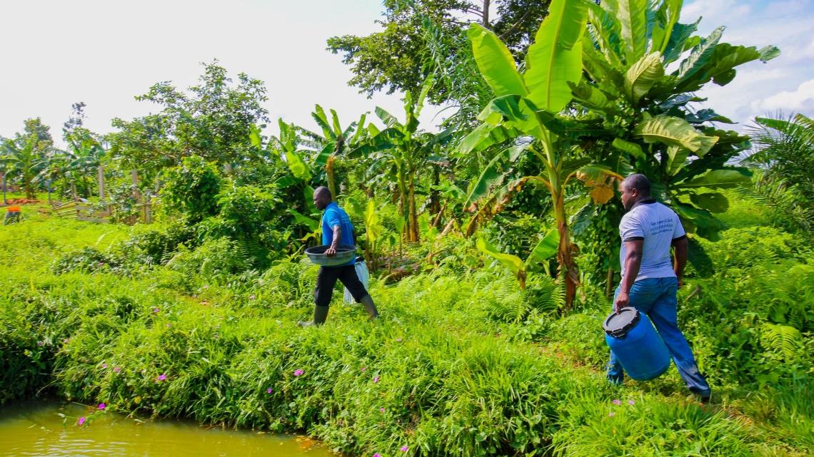 Benin_5