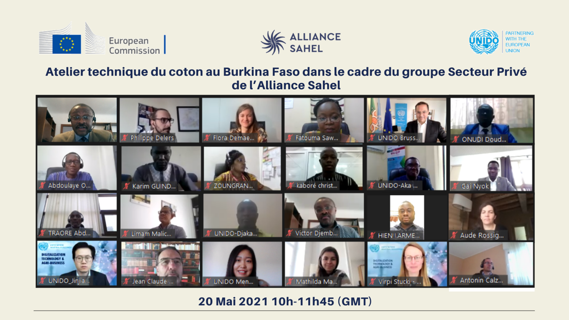 Private Sector Group of the Sahel Alliance mobilizes to support local cotton processing in Burkina Faso