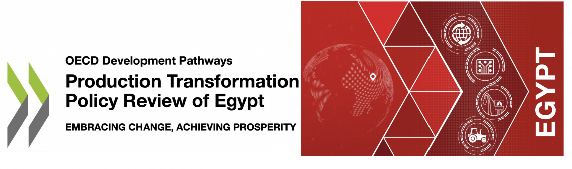 Progress on Africa's integration boosts prospects for economic transformation in Egypt