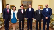 Egypt committed to increasing UNIDO programmes to meet country's industrial development goals