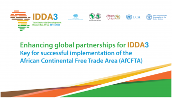 Enhancing global partnerships for IDDA III