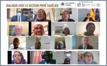 Entrepreneurs give their take on private sector development in the Sahel
