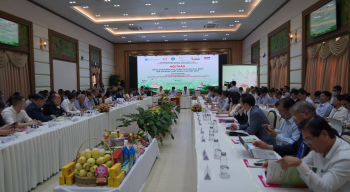 Viet Nam's mango industry: towards compliance with export market requirements